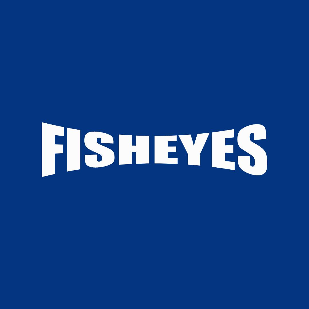 Fisheyes travel tech Partner